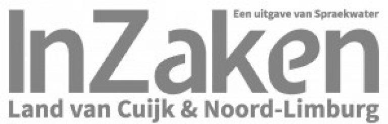 InZaken-logo-300×96
